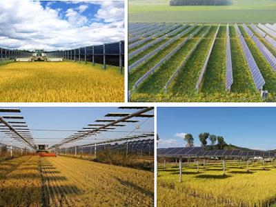 Cơ hội nào cho Nông nghiệp kết hợp với Năng lượng sạch